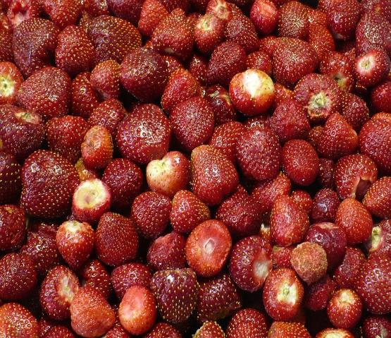owoce mrożone